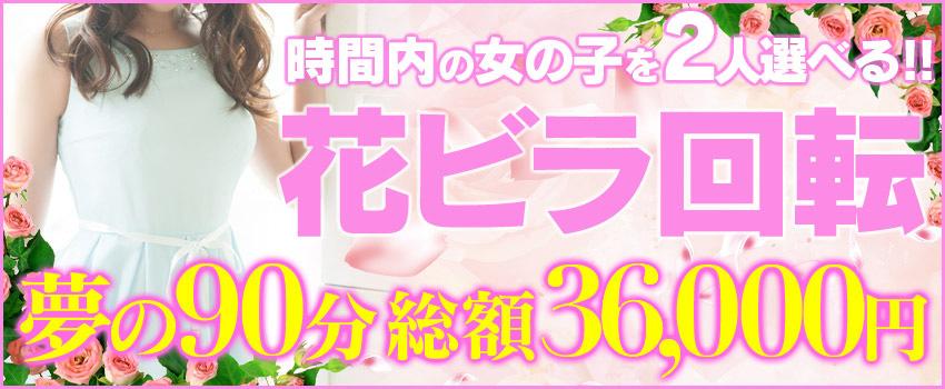 吉原ソープ「ドリームグループ」東京夢物語|花ビラ回転!